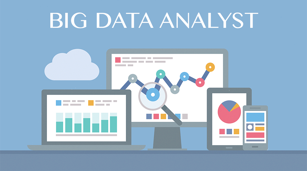 Data Analyst in NHL